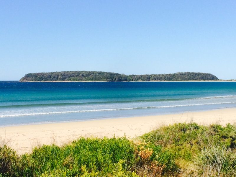 the best learn to surf beach in NSW